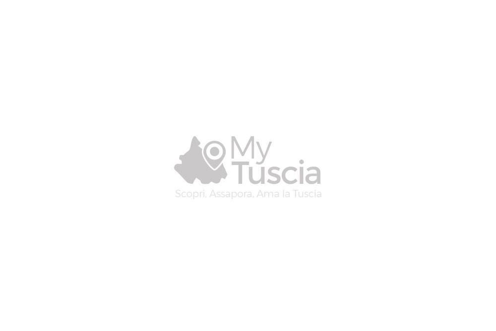 Nocciole Tostate della Tuscia - Avelloil