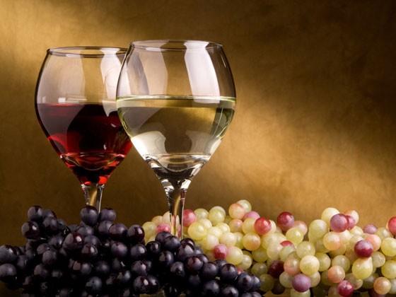 Il Vino della Tuscia