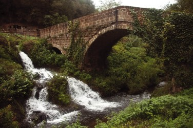 Monumento Naturale Parco delle Forre