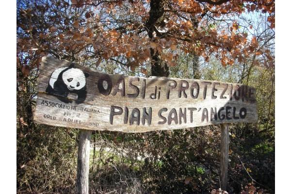 L' Oasi WWF di Pian Sant' Angelo