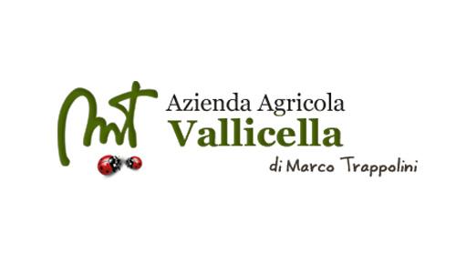 Produttore Tuscia Azienda Agricola Vallicella
