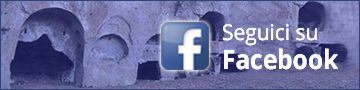 Banner mi piace Facebook