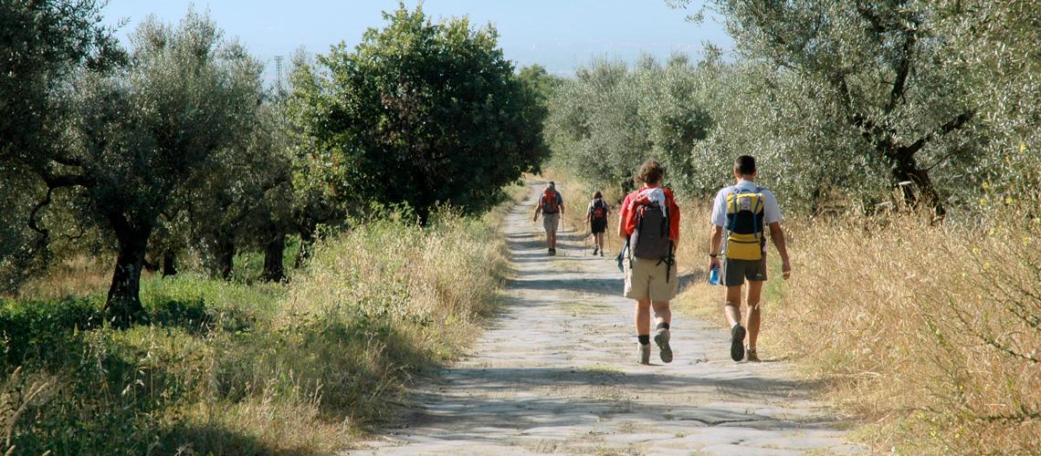 Via Francigena nella Tuscia: 5 tappe da non perdere