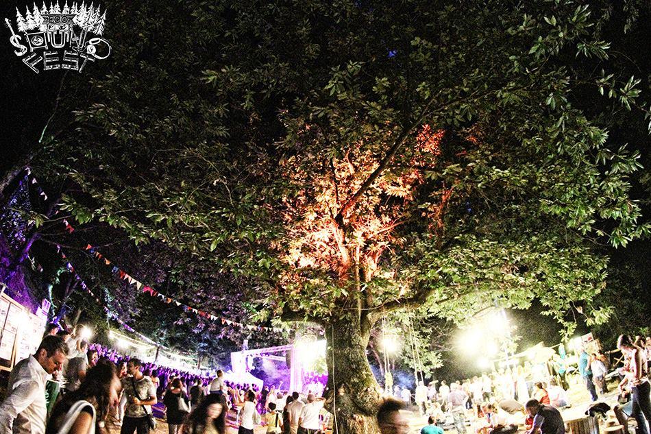 Eco Sound Fest - Musica - Natura